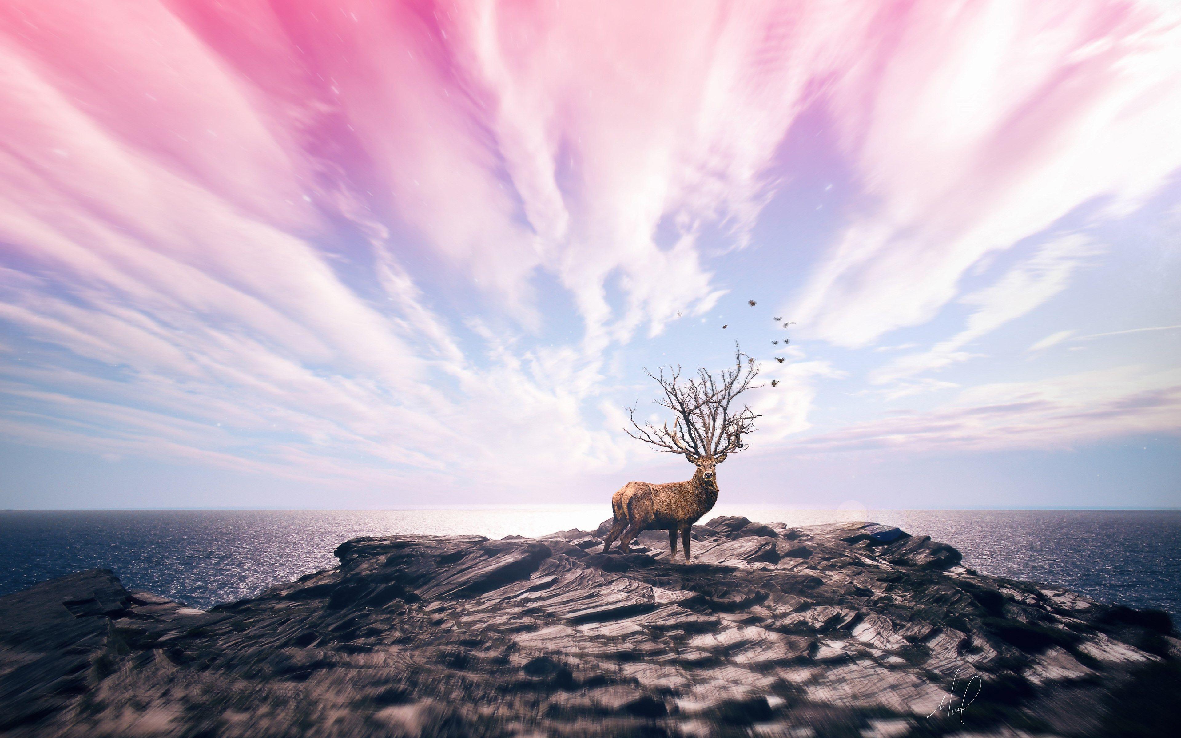 Digital Art With Deer Tree Bran Antler 3840x2160 Hd Hd Wallpaper Digital Art Wallpaper
