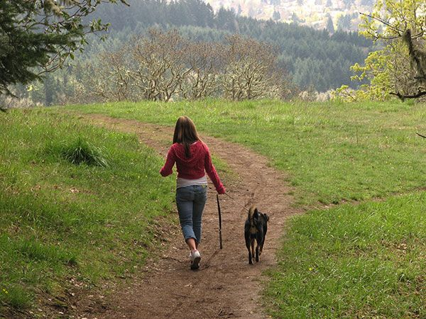 Hiking Biking Trails Corvallis Oregon Oregon Travel Fall Contest
