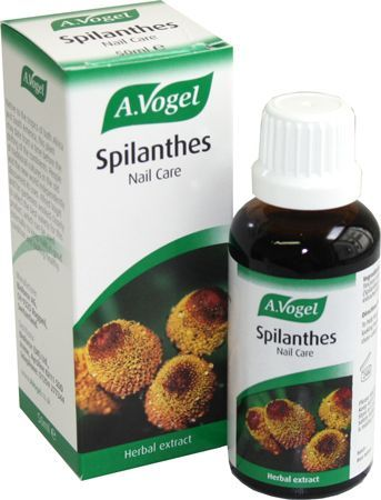 A. Vogel Spilanthes 50ml A. Vogel Spilanthes 50ml: Express Chemist offer fast delivery and friendly, reliable service. Buy A. Vogel Spilanthes 50ml online from Express Chemist today! (Barcode EAN=7610313303465) http://www.MightGet.com/january-2017-11/a-vogel-spilanthes-50ml.asp