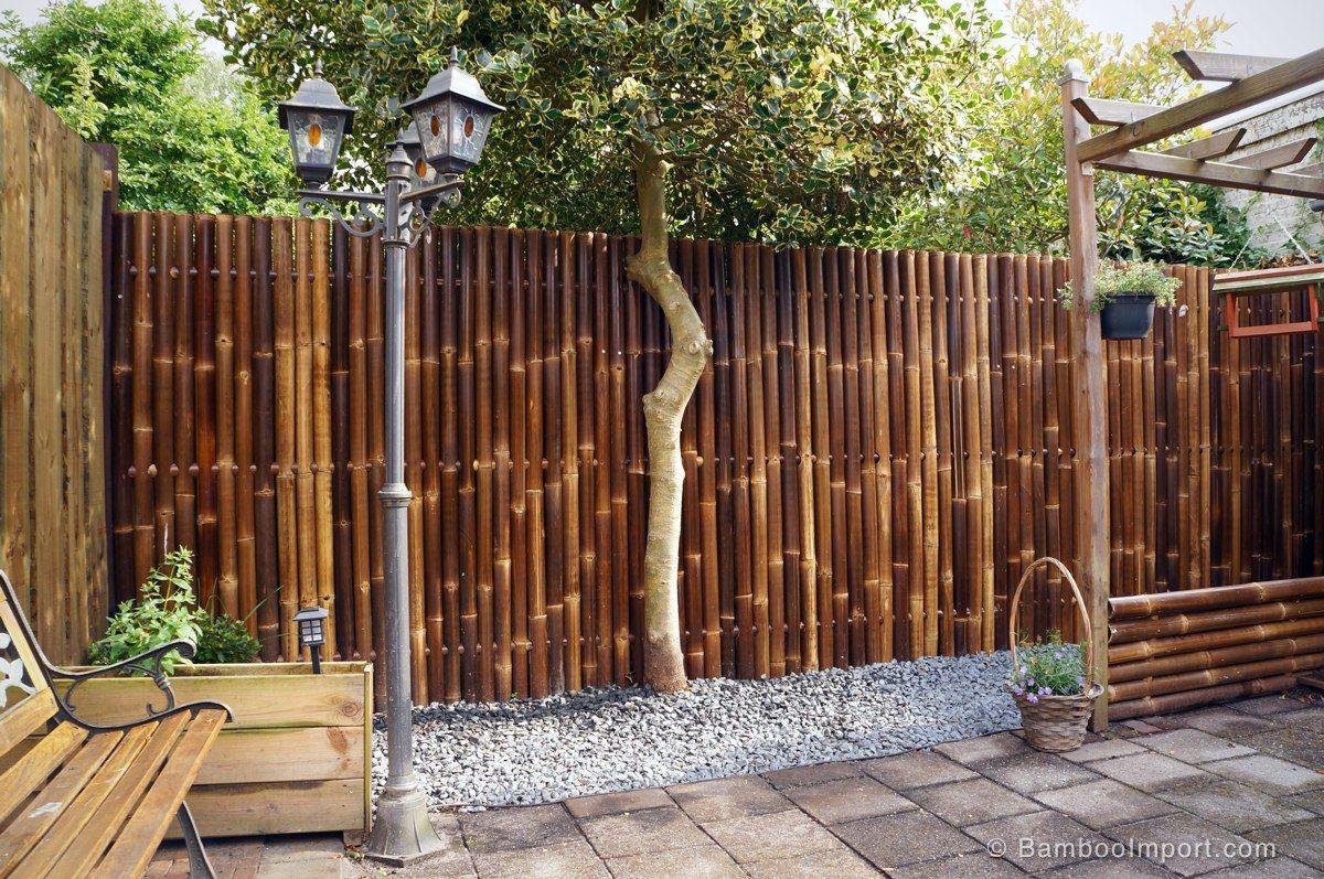 Zwart Bamboescherm Giant 180 x 180 cm Bamboo landscape