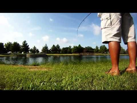 Cannot Get Them All! - Stocker Trout Fishing Stocker Trout Fishing