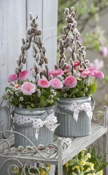Frühlingsdeko mit Bellis,  #Bellis #Blumen #Frühlingsdeko #mit