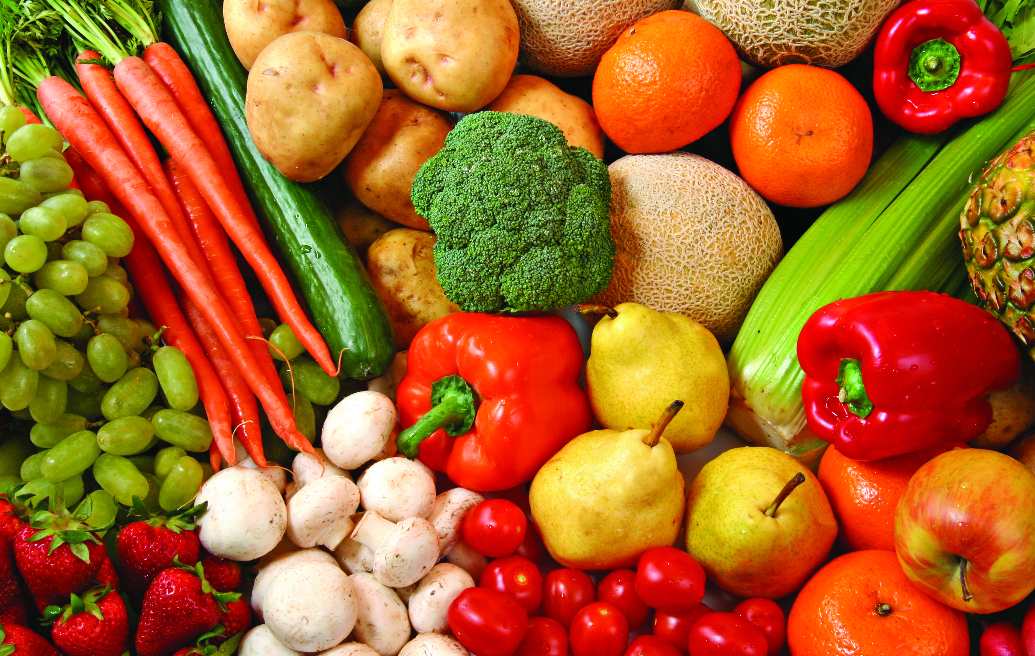 Healthy Food Is Number 1 On Our List You Should Always Be
