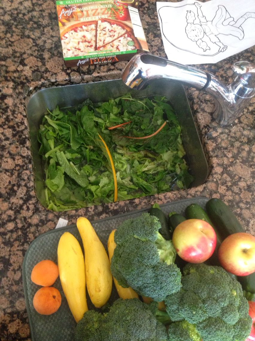 A sink FULL of fresh whole greens from the winter Tower