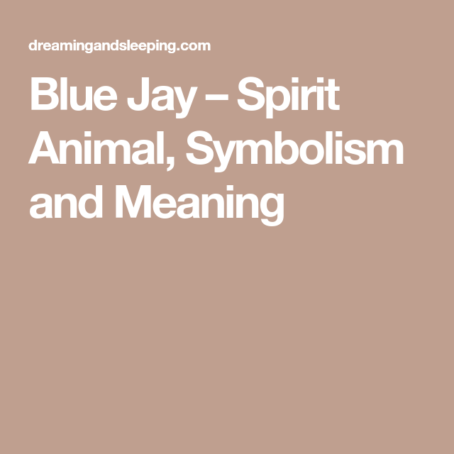Blue Jay Spirit Animal Symbolism And Meaning Native American
