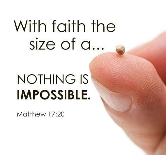 GROWING FAITH TAKES TIME. FAITH STARTS AS A SMALL SEED. OVER TIME, THROUGH HARDSHIPS, WINDS OF DOUBT, TRIALS AND TRIBULATIONS, FAITH MATURES AND GROWS STRONG, IF DEEPLY ROOTED IN JESUS CHRIST.