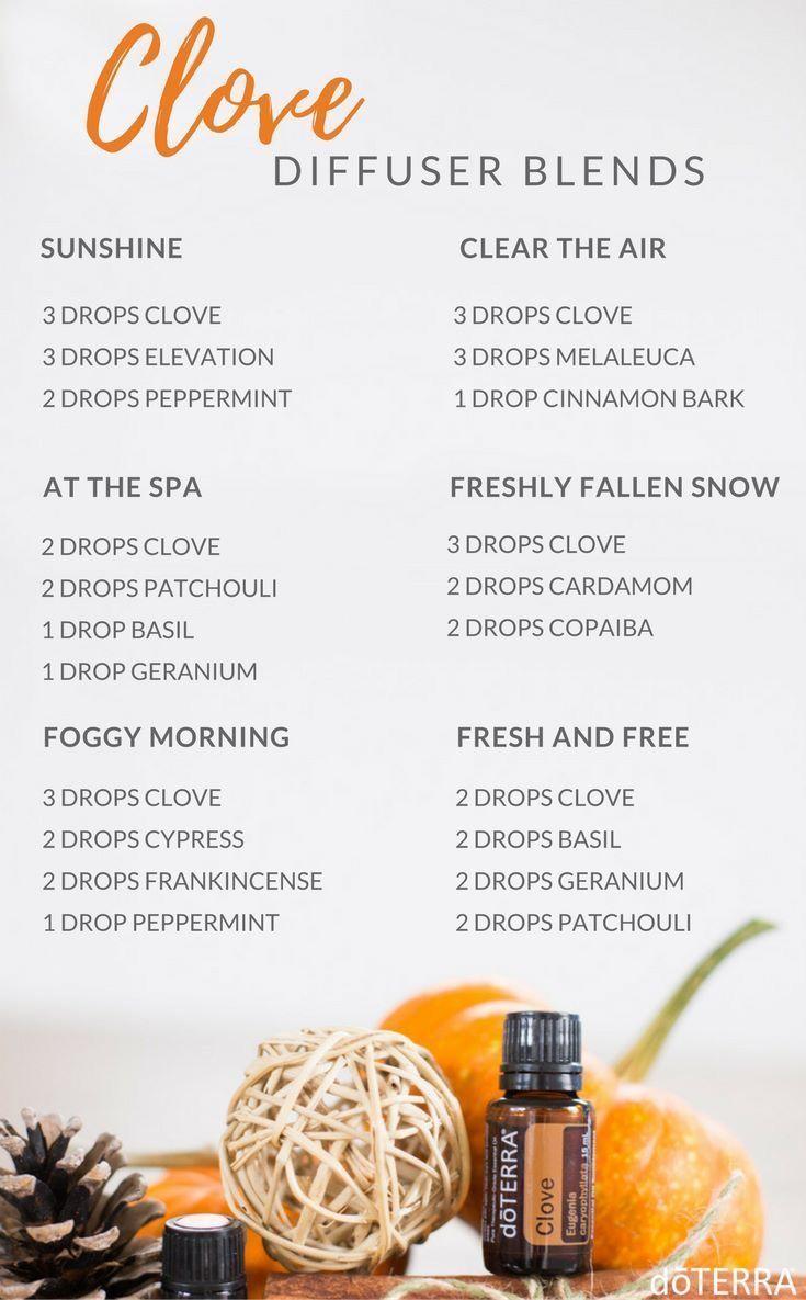Clove Diffuser Blends Essential Oil Diffuser Recipes Clove Essential Oil Oil Diffuser Recipes