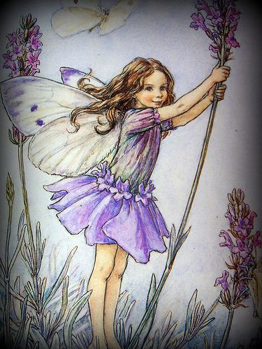 Pin On Embroidery Ribbon Flower Fairies