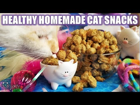 5 How To Make The Best Homemade Kitty Treats Grain Free High Protein Cat Recipe Youtube Cat Treats Cat Treats Homemade Raw Cat Food Recipes
