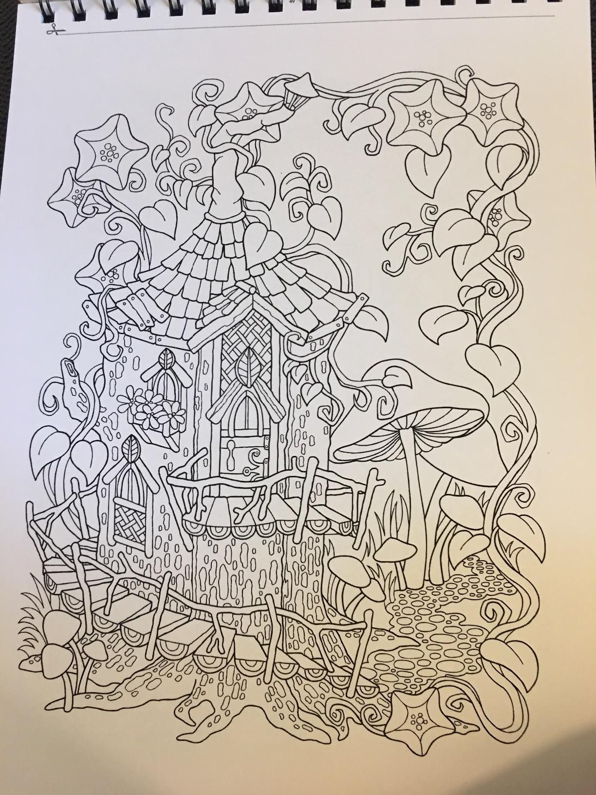 Amazon.com : Adult Coloring Book, Garden Paths; Forest Trails ...