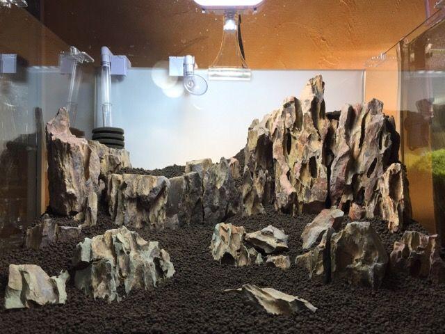 Scaper 39 s tank 50l dragon stone aquascaping pinterest for Aquarium 50l