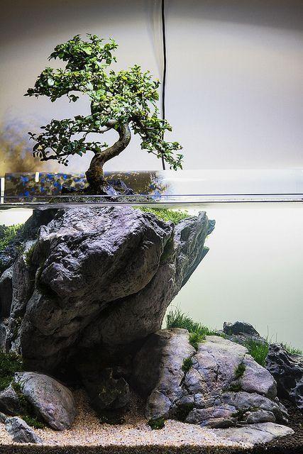 Stunning Aquascape Design Ideas 19   Tropical Fish ...