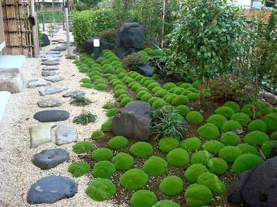 jardin pequeño zen japones Jardin Pinterest Jardines pequeños - diseo de jardines urbanos