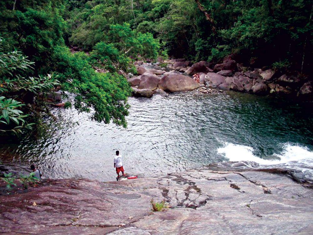 SÃO PAULO - Parque Estadual do Itinguçu - Pesquisa Google
