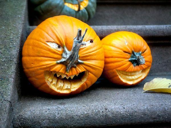 helloween k rbisgesichter f r eine f rchtende atmosph re garten deko pinterest halloween. Black Bedroom Furniture Sets. Home Design Ideas