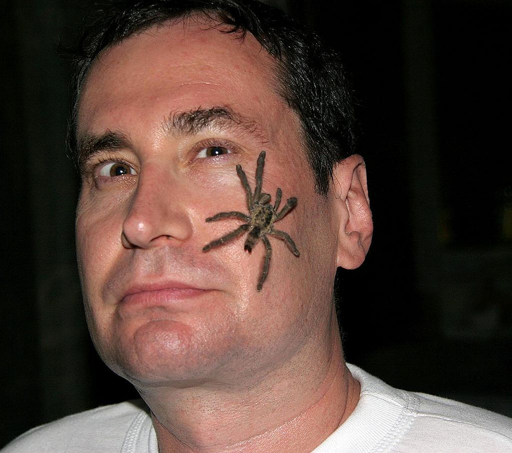 Friendly Tarantula Bad face tattoos, Bad tattoos, Face