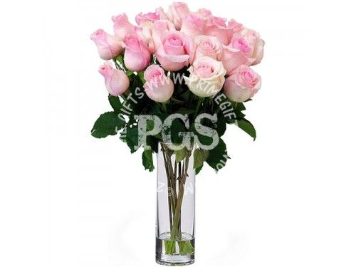 24 Pink Imported Roses Send Flowers To Pakistan Pakistan Gifts Mother S Day Special Gifts Rose Delivery