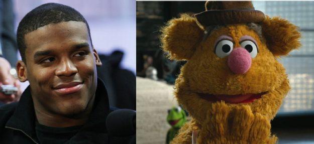 All 32 Nfl Quarterbacks Their Muppet Doppelgangers Muppets Football Funny Fozzie Bear