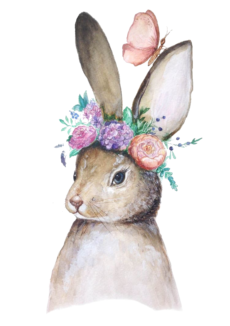 THE HARE RABBIT DRAWING WATERCOLOR PAINTING ANIMAL ART 8X10 REAL CANVAS PRINT