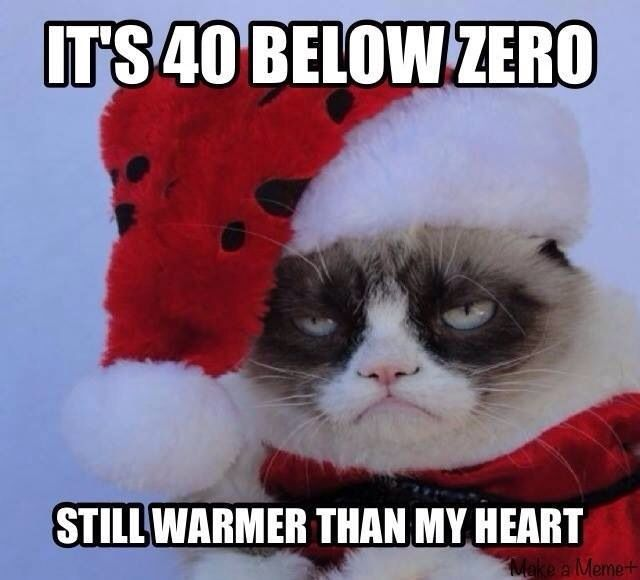 Grumpy Cat is feeling the holidays.