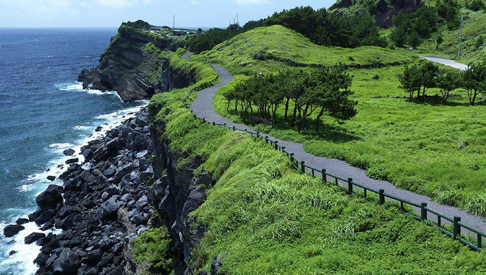 Image result for olle trail jeju
