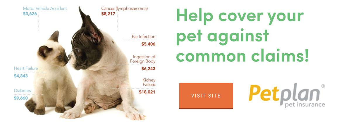 10 Best Pet Insurance In Canada Of 2017 Consumersadvocate Org