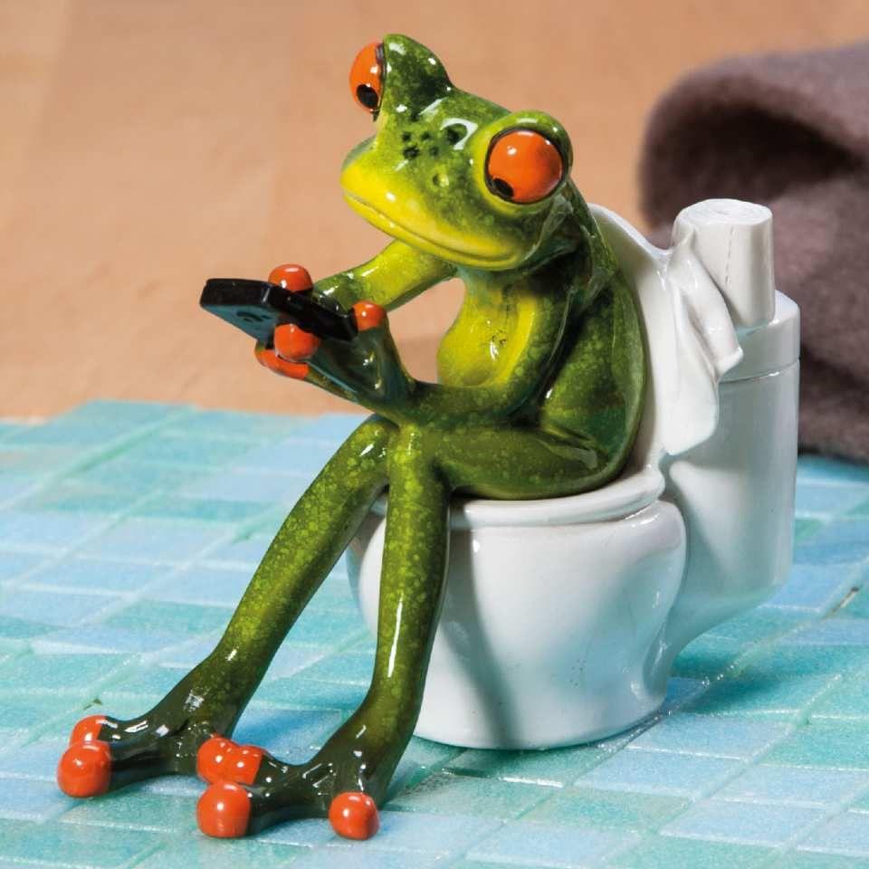 Deko Frosch In Wc Badezimmer Wc Dekofigur Deko Frosch Frosch Lustige Frosche