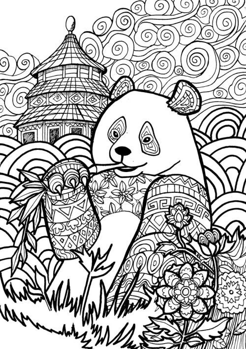 adult coloring strainer panda coloring pagesadult - Panda Pictures To Color