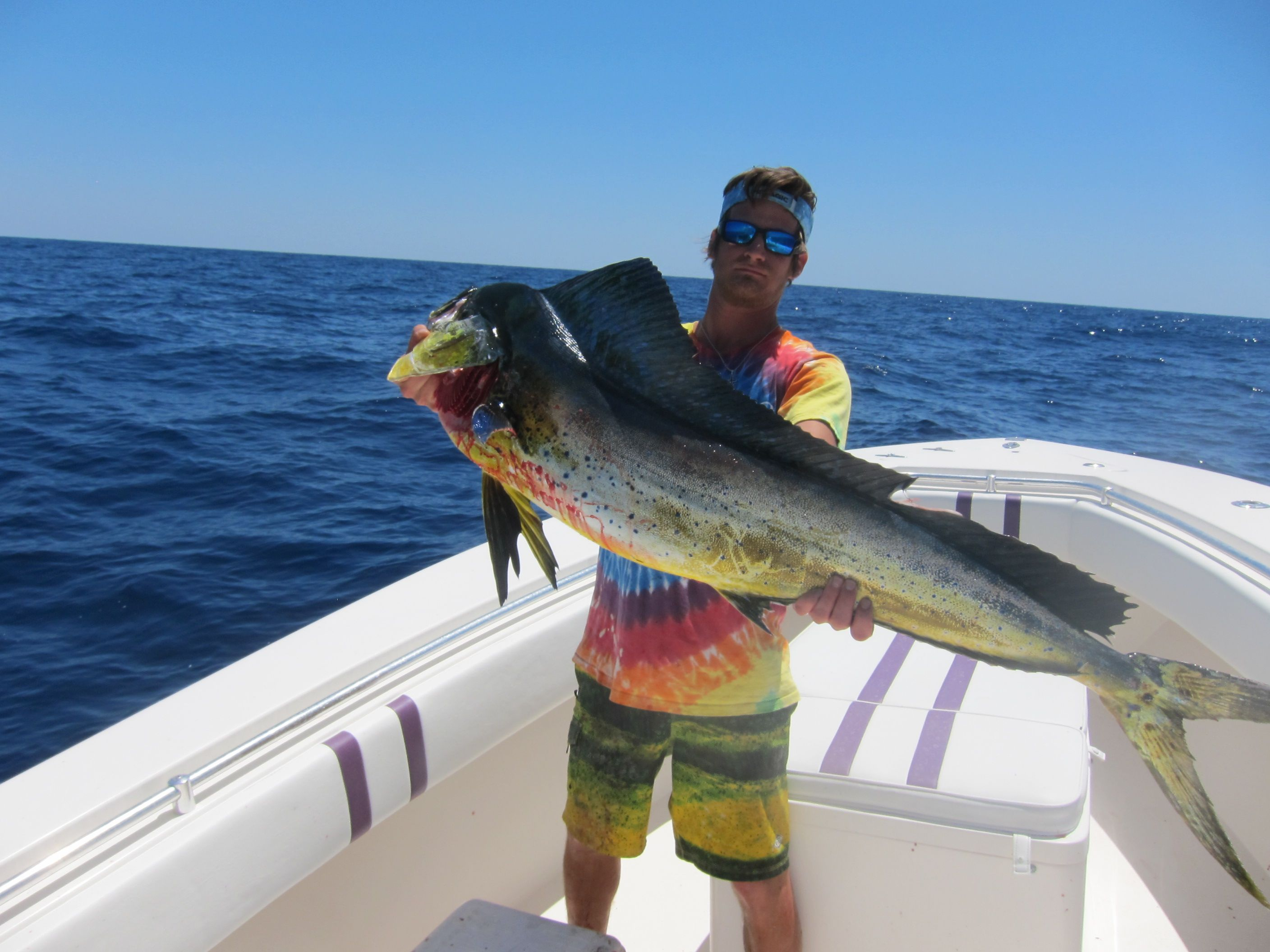 Awesome #mahi from the #offshore trip this weekend #AnglingLaboratory