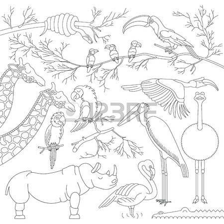 cartoon flamingo: Set of african animals and birds. Made