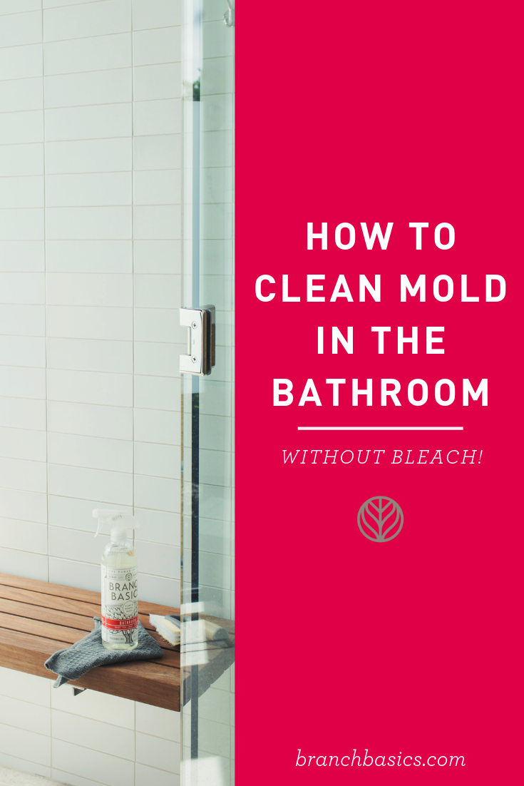 e57c24cfd410281a1d884c3274a855ca - How To Get Rid Of Red Mold In Bathroom