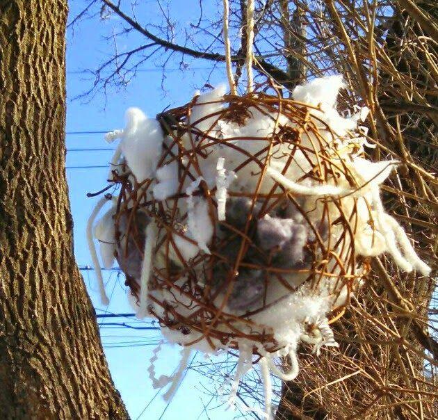 For The Birds Backyard Birds Watching Bird Nest Craft Bird Nesting Material