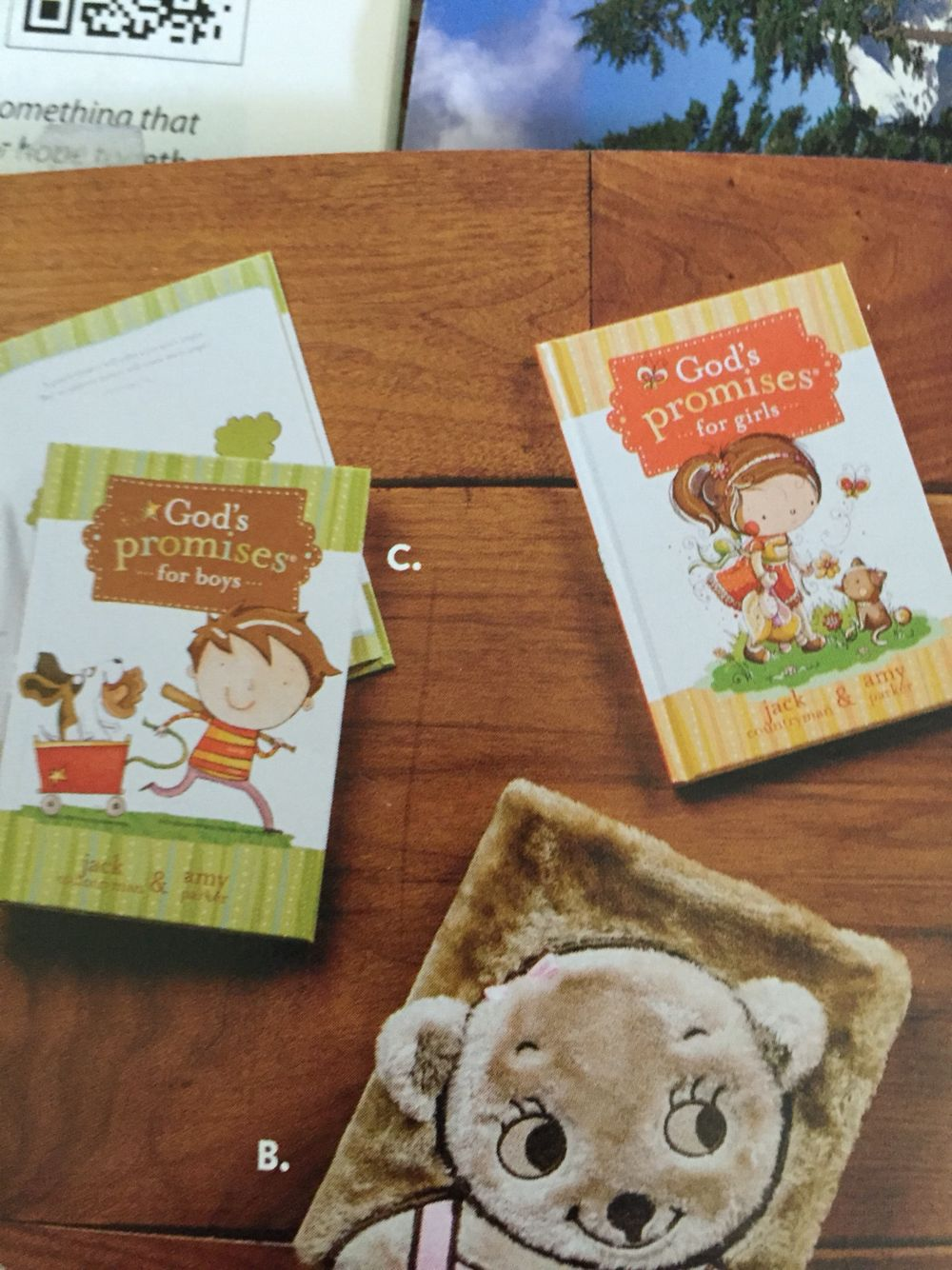 Cute promise books for the kids who are moving up | Sunday