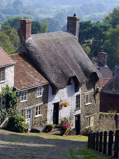 Wander the wood Gold Hill - Shaftesbury, Dorset, England by Oxfordshire Churches