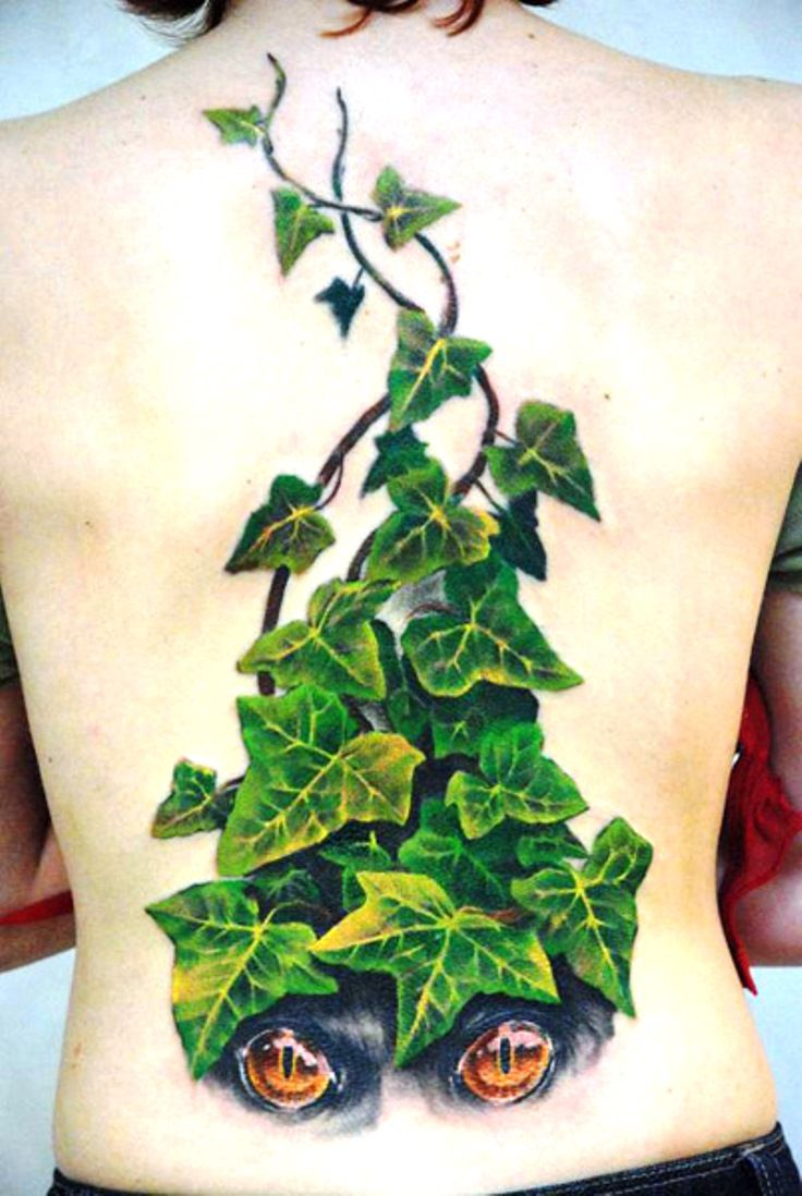 These ivy leaves look amazing rd ivy tattoo pinterest ivy these ivy leaves look amazing rd biocorpaavc Gallery