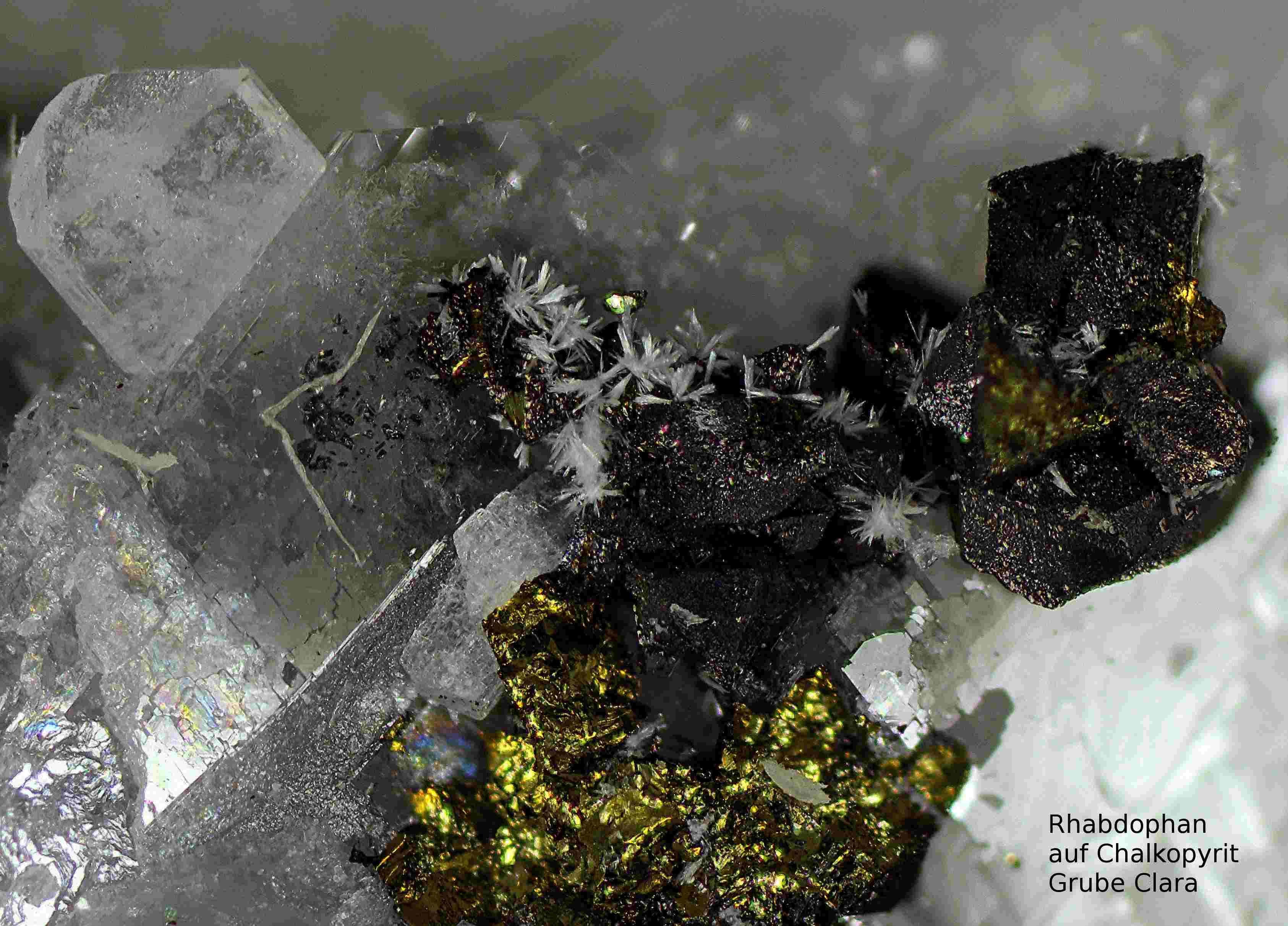 Rhabdophan auf Chalkopyrit ,  Clara Mine,Rankach valley, Oberwolfach, Wolfach, Black Forest, Baden-Würtemberg, Germany, Copyright © H. Stoya