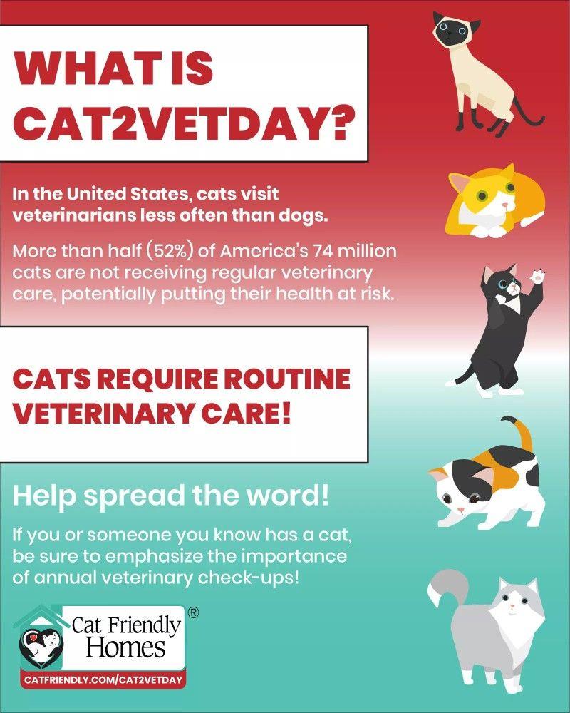 Pin by Cyndy Dent BrooksFetty on Pet Info Veterinary