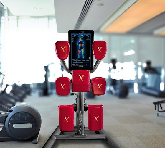 North York Personal Trainer For In Home: Nexersys Delivers Unique Workouts Each Time You Train From