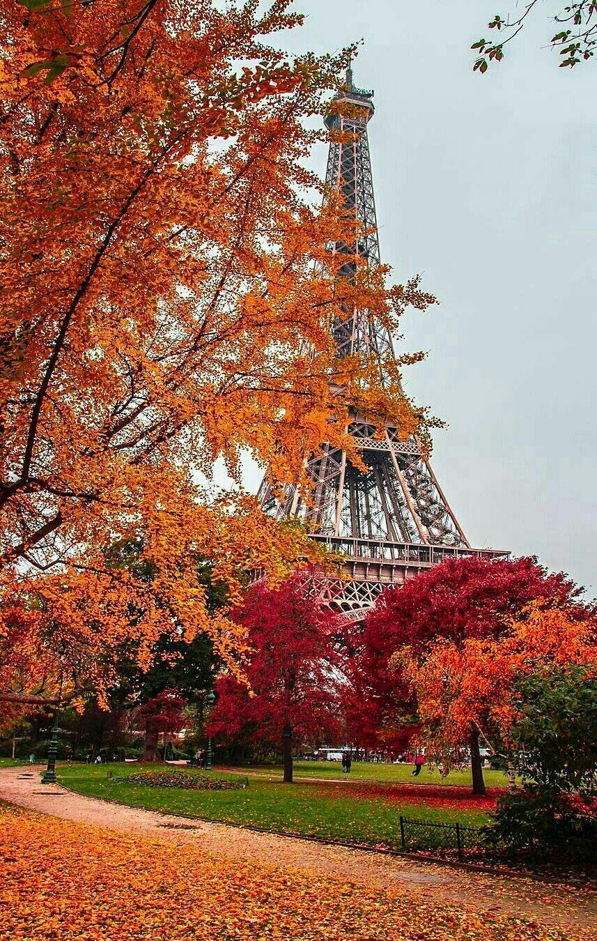 Oh Beau Et Juste Paris Tu Es Le Joyau Parmi Toutes Les Villes Du
