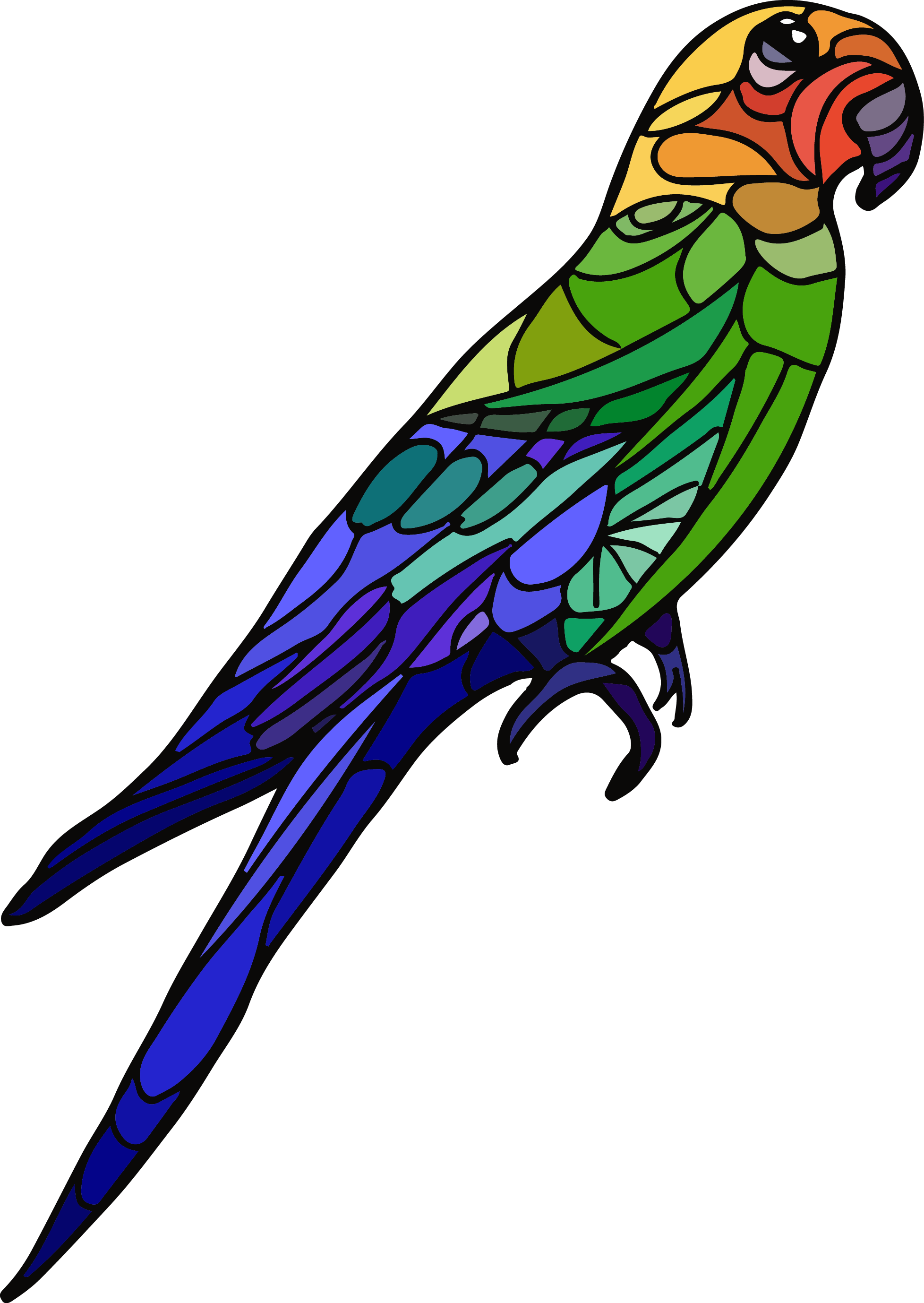 The Extinct Carolinaparaquet From The Efrstickers