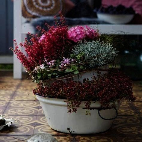 your balcony and terrace in autumn  BLOOMs  balcony and terrace tips for decorating and planting outdoors Romantic planting ideas for your balcony and terrace in autumn...