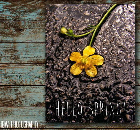 Spring quote - quote print- fine art photography