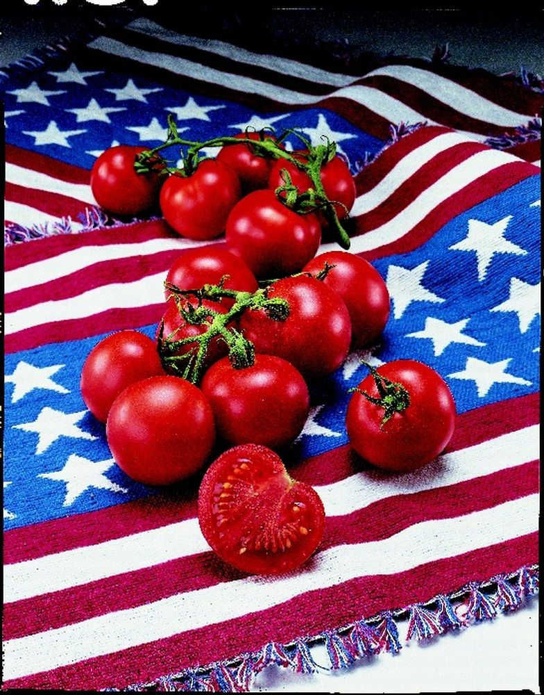 Tomato 'Fourth of July' The name says it all! Be the first on your block to have vine ripened red, luscious tomatoes by the Fourth of July.