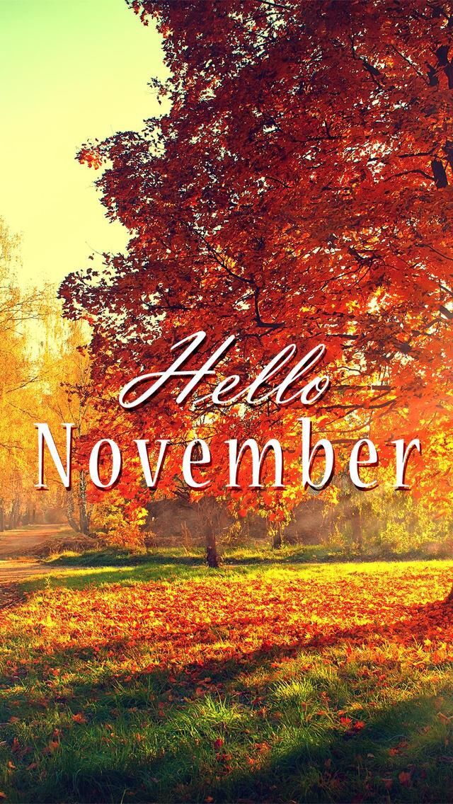 Good Wallpaper IPhone/hello November/fall ⚪️