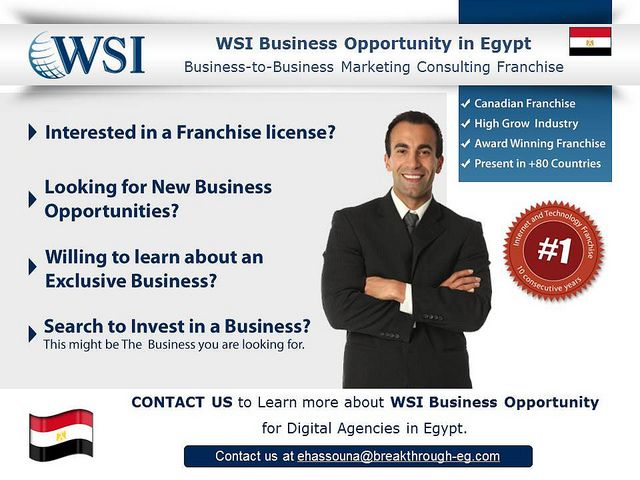 WSI Business Opportunity in Egypt. Learn more about this ...