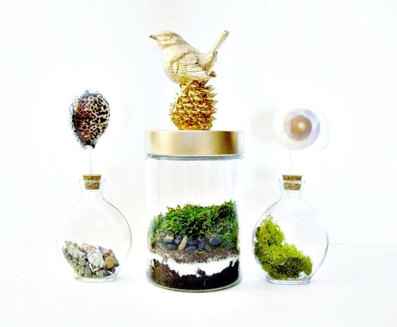 Terrarium Vase with Gold Bird Finial & Glass Vase: Live Moss Plant Garden in Layered Sand Jar Home Decor for her. $58.00, via Etsy.
