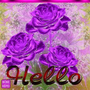 4972087_3386d.gif 500×500 pixels Purple flowers