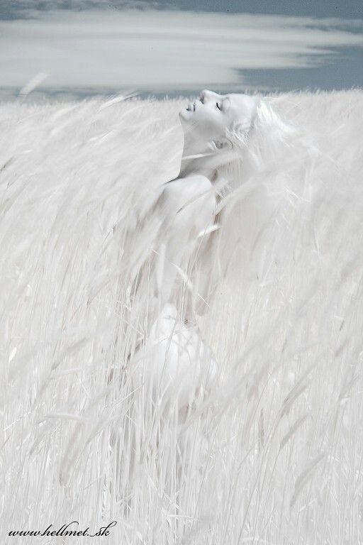 White Portrait - White Field