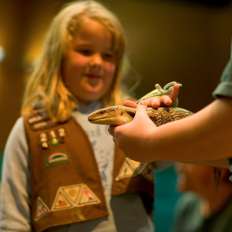 Scout Classes at the Woodland Park Zoo