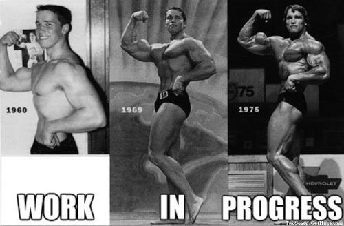 Rome wasnt built in a day arnold took about 15 years o fitness arnold took about 15 years o malvernweather Choice Image